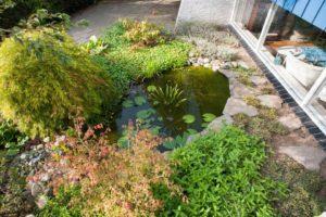 Tuinaanleg vijver in de tuin - Piek Zweverink Hoveniers